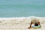 Summer Reads